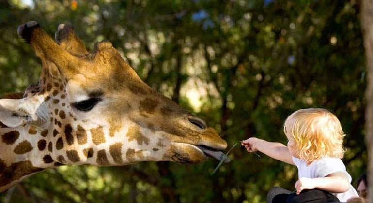 Günstig in den Zoo mit der ganzen Familie