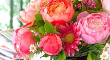 So bleiben Schnittblumen länger frisch